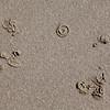 Varengeville Strand 1