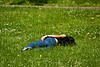 A girl sleeping in the grass in Hyde Park, London, England.