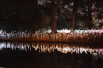 Longwood Gardens 2012