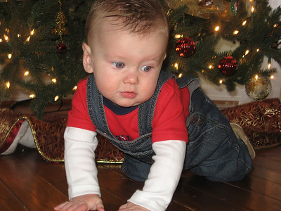 Luke 1st Christmas