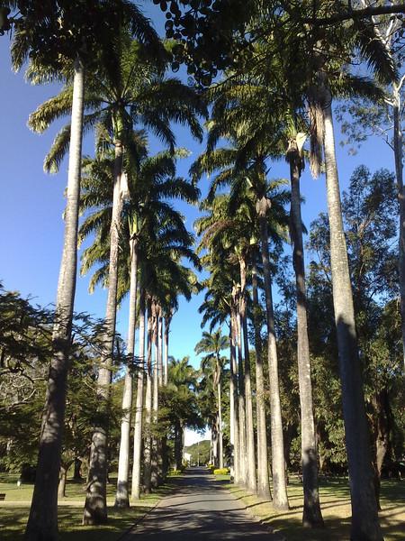 Mackay and Whitsundays