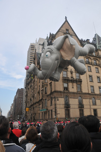 Horton Hears a WHAT?