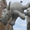 Horton Hears a WHAT? (Dumbo wannabe?)