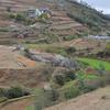 Madagascan Village 2