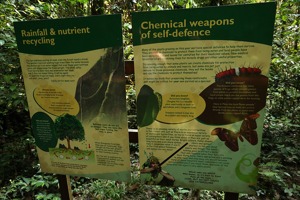 There are lots of informative boards about the forest and animals.
