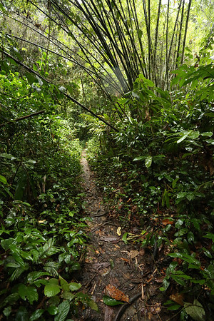 The path is very clear and, surprisingly, no local guide is walking with you. In most places where they are mandatory you start looking for some freedom but here it's not the case.