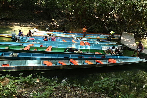 Most of the boats are from tours that came only for the caves.