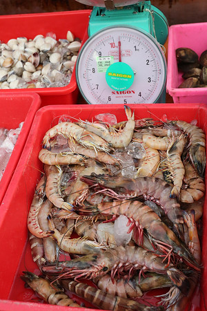 Giant shrimps more expansive than lobster.