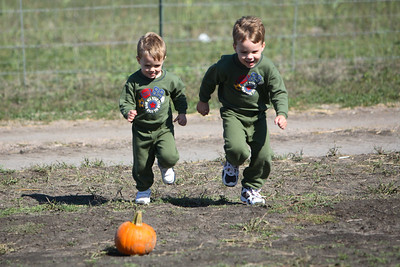 I'll race you to the pumpkin!