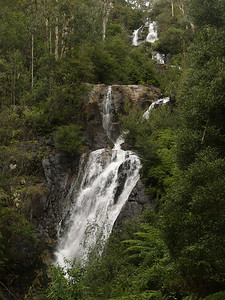 20060714_2150 Steavenson's falls, outside Marysville The major attraction of Marysville. These are the tallest falls in Victoria (Australia), falling 82 metres in three stages.