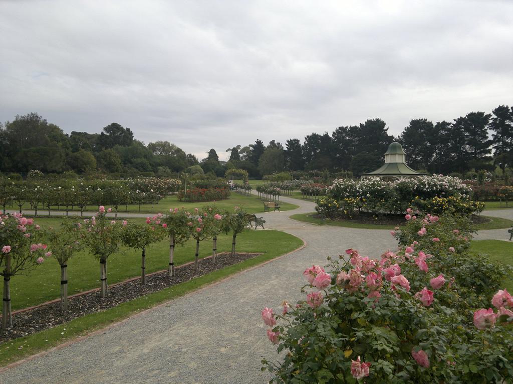 20120419_1258_0278 State Rose Garden, Werribee