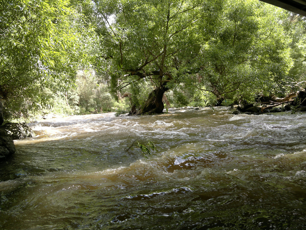 201110_1052_023 Darebin Creek (bridge at Darebin Park), after the rain