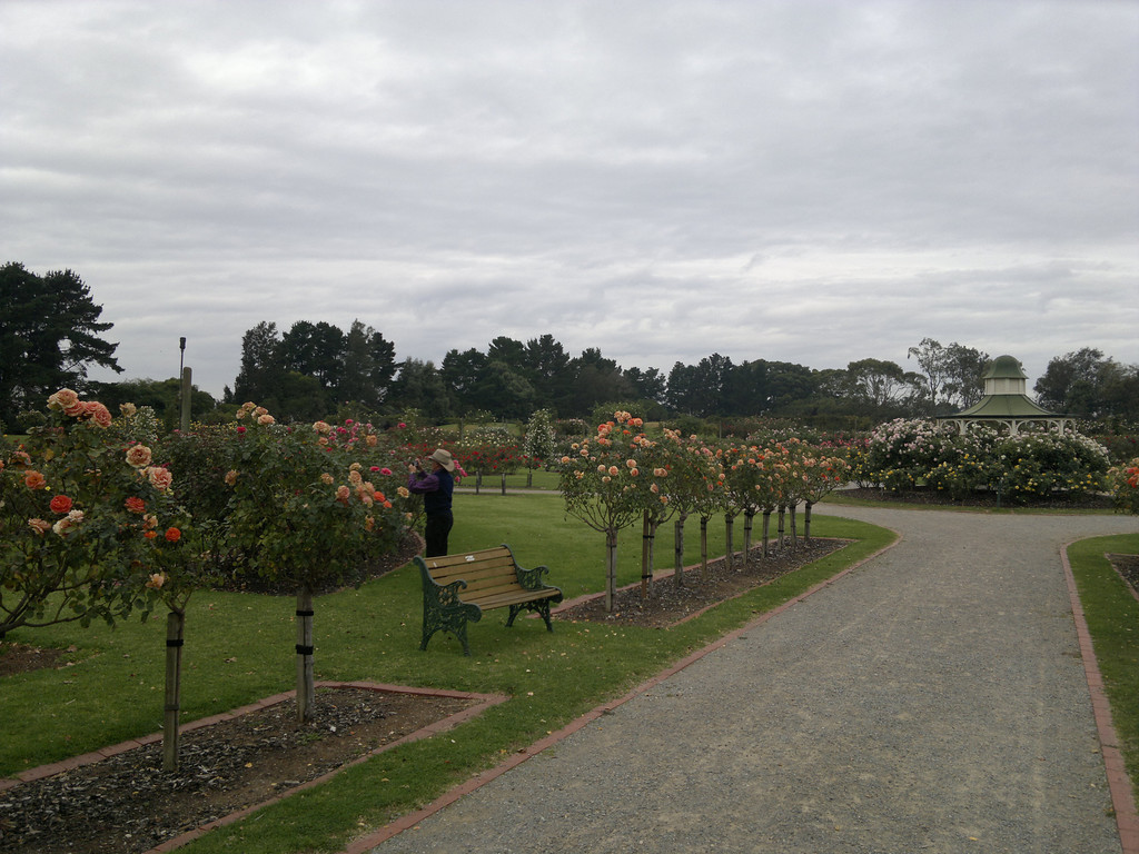 20120419_1116_0266 State Rose Garden, Werribee