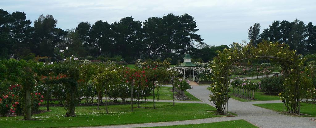 20120419_1047_6518 State Rose Garden, Werribee