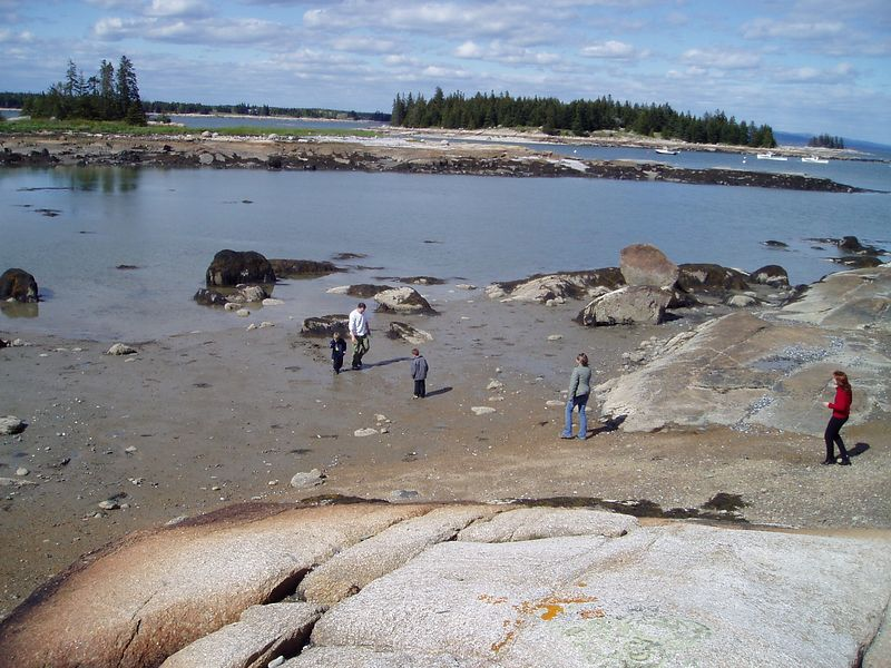 Low tide at the pound