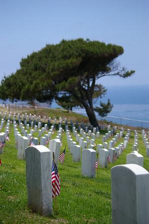 memorial day 5/24/09