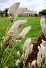 Monticello - Garden 38