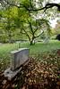 Monticello - Cemetery 22