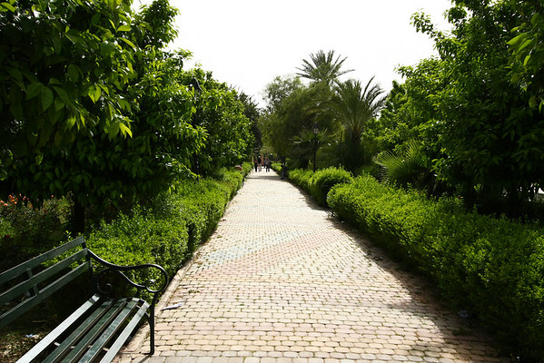Park near Koutoubia Mosque. The country doesn't enjoy a lot of rain but some parks have lush vegetation.