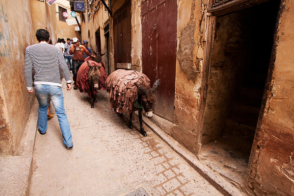Fes is a large city in the north side of the country. The medina is believed to be the world's largest contiguous car-free urban area.