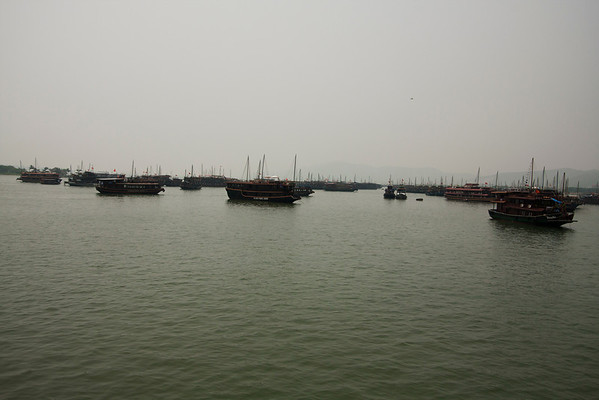 There are at least 400 boats doing the same tour. Right now it was rainy season so most of them were not needed.