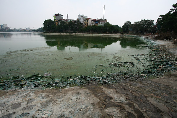 The important lakes are quite clean. This was far from the touristic places, in a residential area.