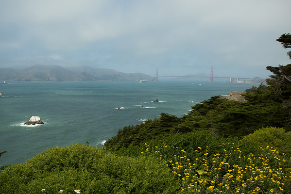 First time seeing the bridge. Some people are visible far away, close to the water so we decided to get there.