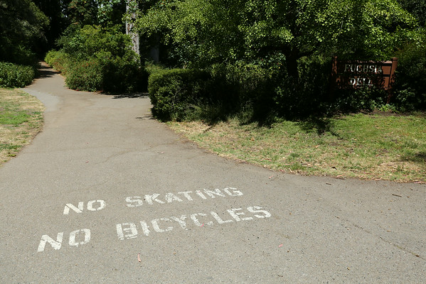 Golden Gate park with separated roads for pedestrians and bicycles.