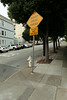 I tried to find the official steepest road in San Francisco. When getting close to it there were already warning signs.
