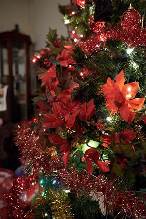 Morgan Christmas 2012 - Greenville