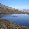 May 2011. A lochan on the route to Gairich, on the left, near Loch Quoich, Highland, Scotland.