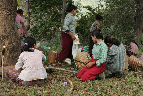 Women having a break before taking the fire wood home. Men are cutting it and the women bring it to the village.