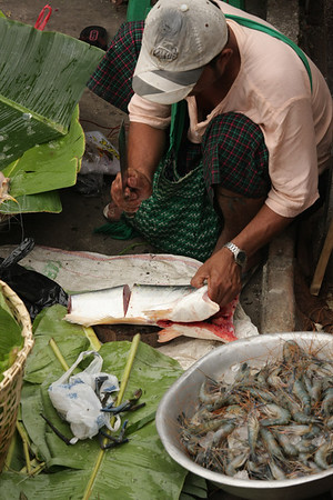 Preparing the fish for sale. He had more types of fish and some giant shrimps.