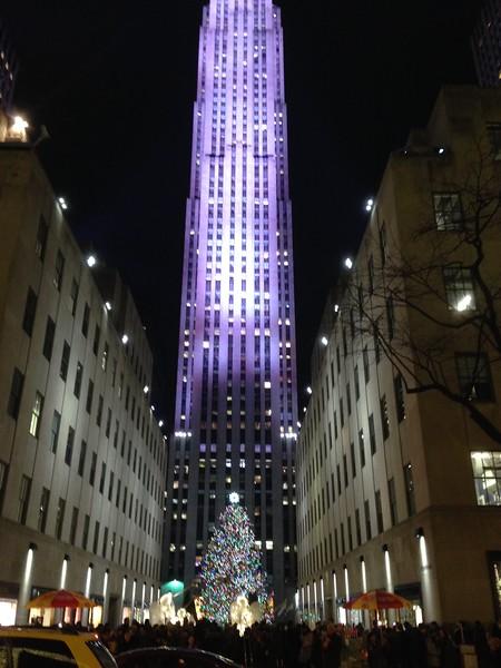 NYC Holiday Trip 2014
