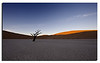 52. The classical and stereotype capture from Dead Vlei, Namib Naukluft Park.