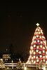 National Christmas Tree 2007