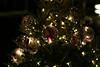 National Christmas Tree 2007