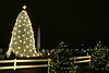 National Christmas Tree 08