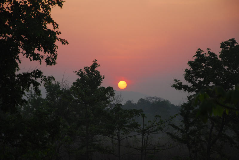 Dawn over Chitwan
