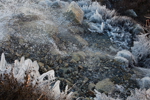 The night was very cold and even parts of the river were frozen. Some vegetation was completely covered in ice.