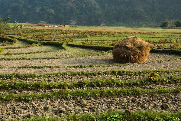 There was an unpaved road along the river and small villages from time to time. Most people are busy with agriculture.