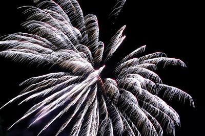 New Year's 08-09 at Royalwood