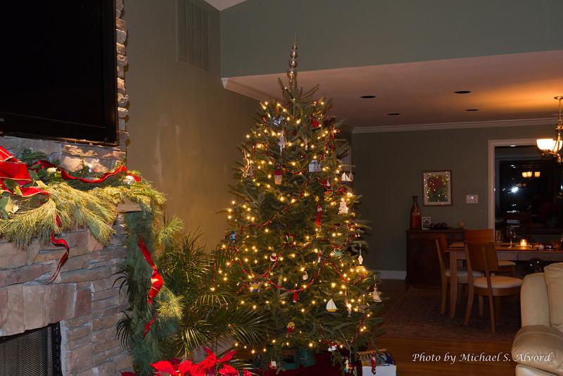 Nice shot of thier Christmas Tree.