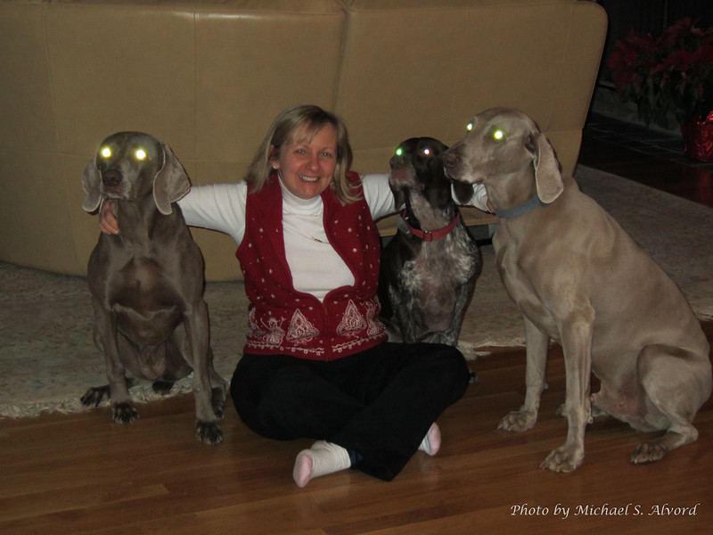 I think they are really not dogs, but aliens.