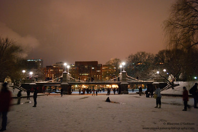 Frozen pond, Public Gardens, Boston