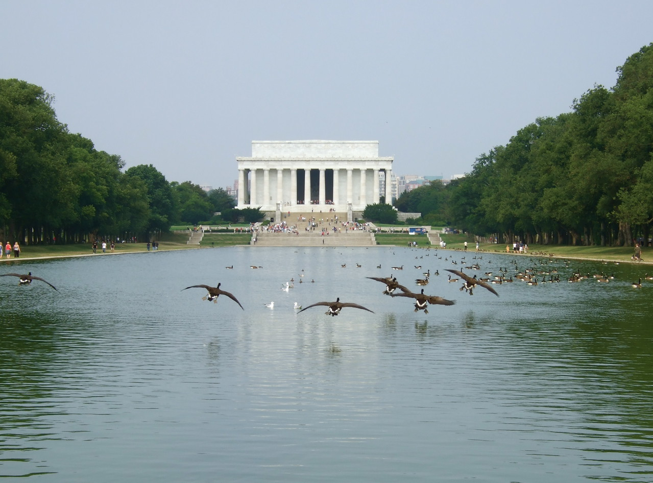 Lincoln Memorial with geese, Washington DC
