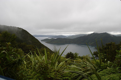 A view from the Queen Charlotte track on the Marlborough Sounds.
