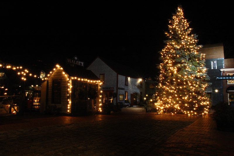 Bowen's Wharf Christmas Tree