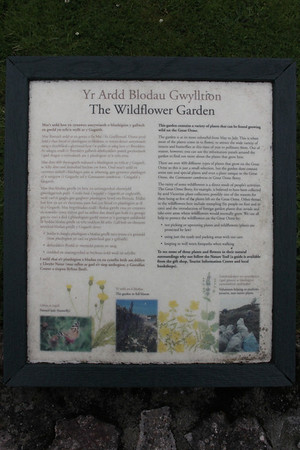 Description plaque for the Wildlife Garden the top of the Great Orme. 26 June 2012