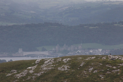 Gloomy weather attempting to hide the view of Conwy from the top of the Great Orme. 26 June 2012